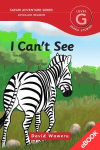 I Can't See – Ebook