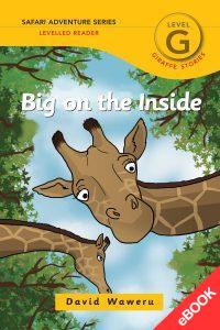 Big on the Inside – Ebook